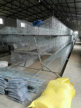 Commercial Rabbit Farm Cage, Metal Rabbit Breeding Cage