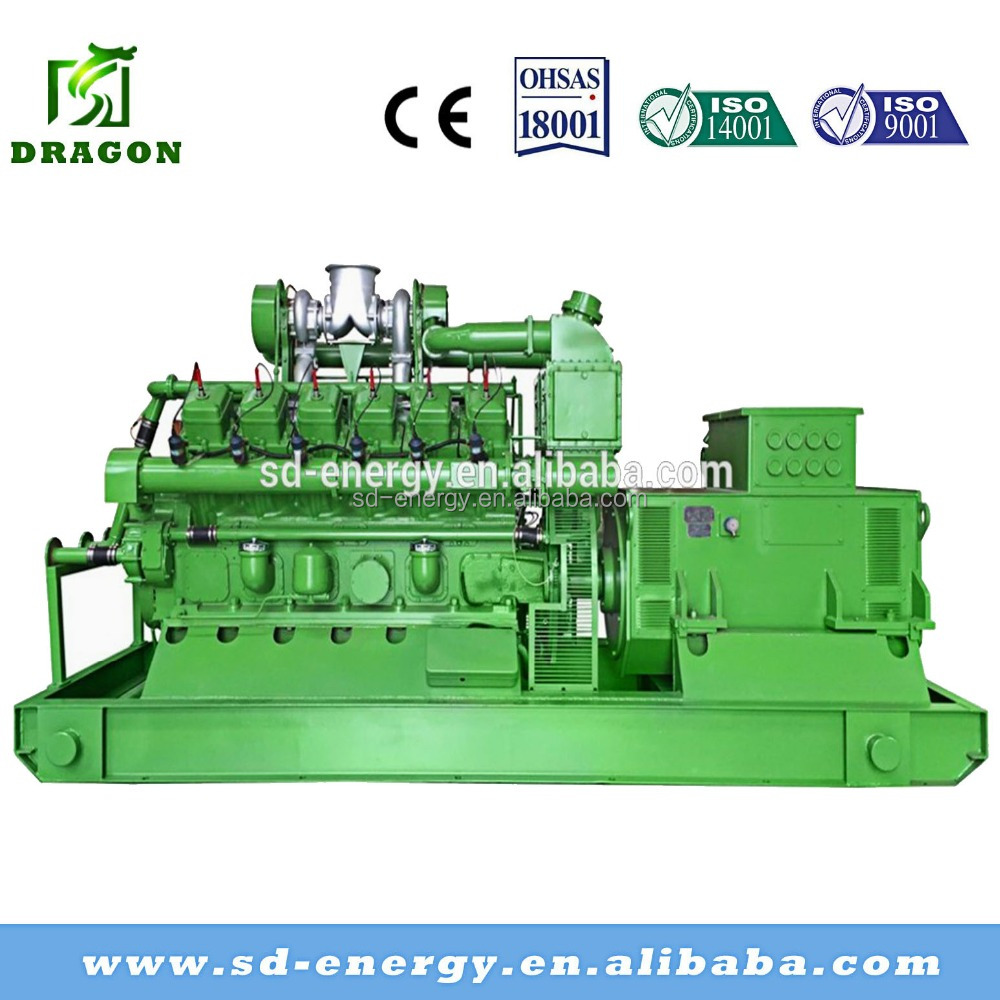 500kw AC Three Phase Output Bio Gas Generator or Electric Power Plant