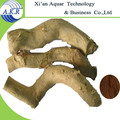 200:1 Tongkat Ali Extract /2014 New Products Tongkat Ali Extract/Wholesale Alibaba China Tongkat Ali Extract