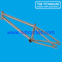 Hot sale Chinese cheap titanium bmx bike frame TSB-BM1101