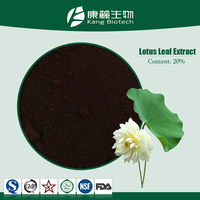 OEM Chinese factory Nuciferine Nelumbo Dried lotus leaf p.e chinese herbal weight loss pills