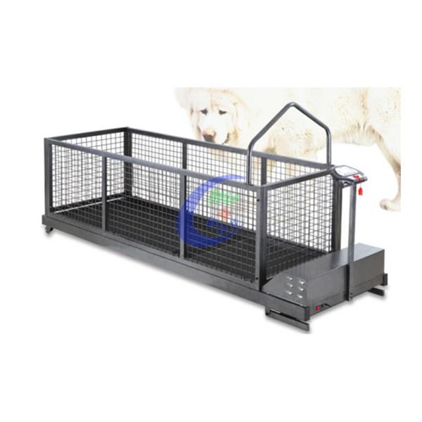 MC-C600SWG (HOT SALES) big dog running machine.jpg