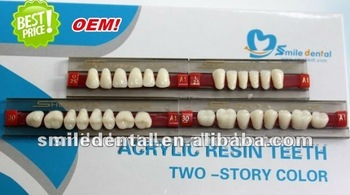 Good Price 2 layer False Teeth