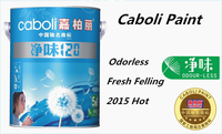 Caboli waterproof primer for painting company names