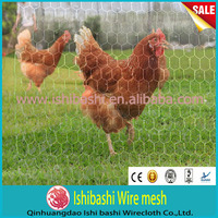 Hot sale cheap chicken wire dog fence( 24 year factory with ISO & CE)