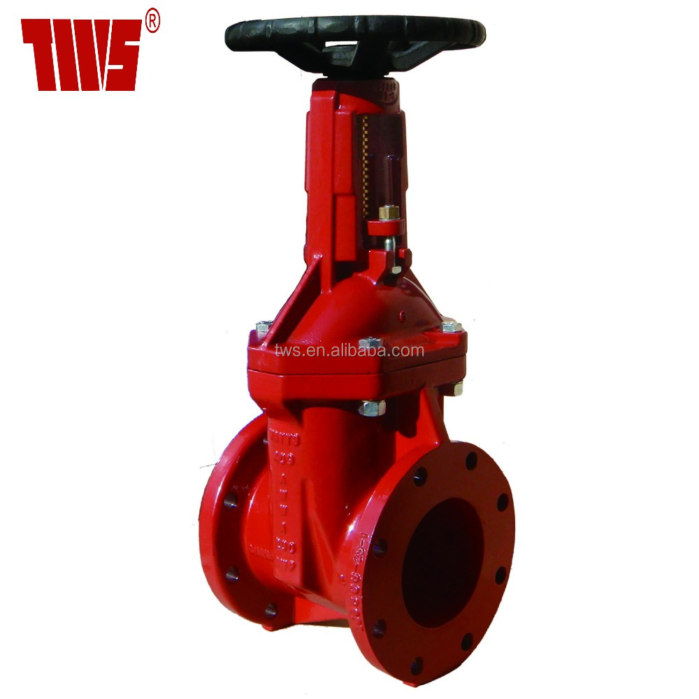 6 Inch DIN Flanged Gate Valve with Rising Stem