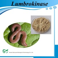 High activity Earthworm lumbricus extract Lumbrokinase