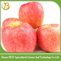 apple from china