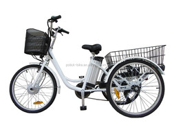 250w three wheels electric bike doe cargos /24' adults electric tricycle with EN15194