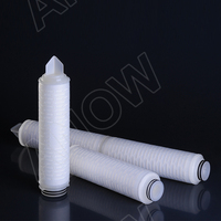 DLM Series Pleated water Filter with PES Micro Filtration membrane Media