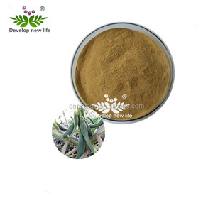 High Quality Natural Devil's Claw Powder Extract 5% Harpagoside