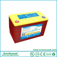 EverExceed Deep Cycle Battery Solar Power Storage Battery 12V 20AH DM-1220