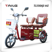 tailg durable passenger tricycle / motorcycle with 3 wheels for sale