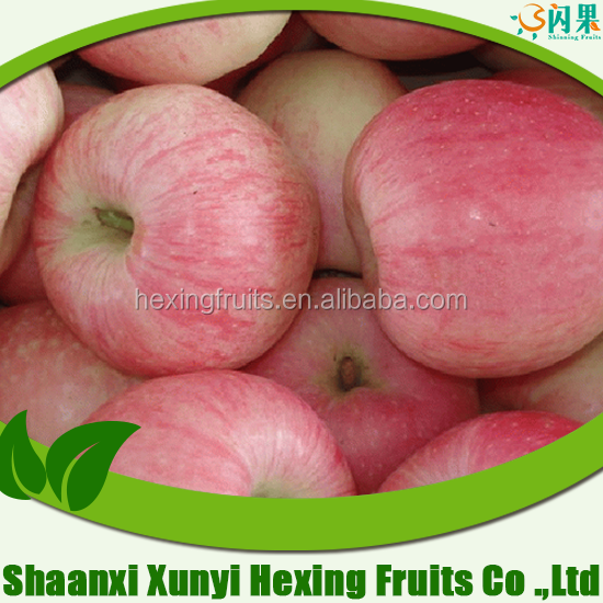 Wholesale price sweet apple fruit from China