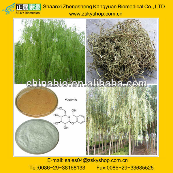 Extract of willow; Salix; Extract of willow bark; Extract of willow leaf