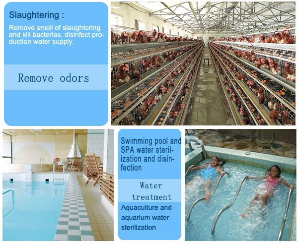 20g to 200g built-in oxygen source water treatment equipment / waste water treatment plant / drinking water treatment plant