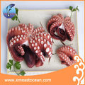Tasty EU frozen cooked fresh octopus madako leg