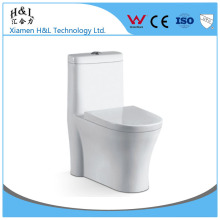 Ceramic Material and Floor Mounted Installation Type types of toilet