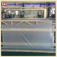 Transparent white PE waterproof tarpaulin for All kinds of cover