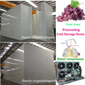 Precooling cold storage room to store grape chilled room