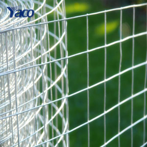 Online shopping 3/8 inch galvanized welded wire mesh roll for bulk sale