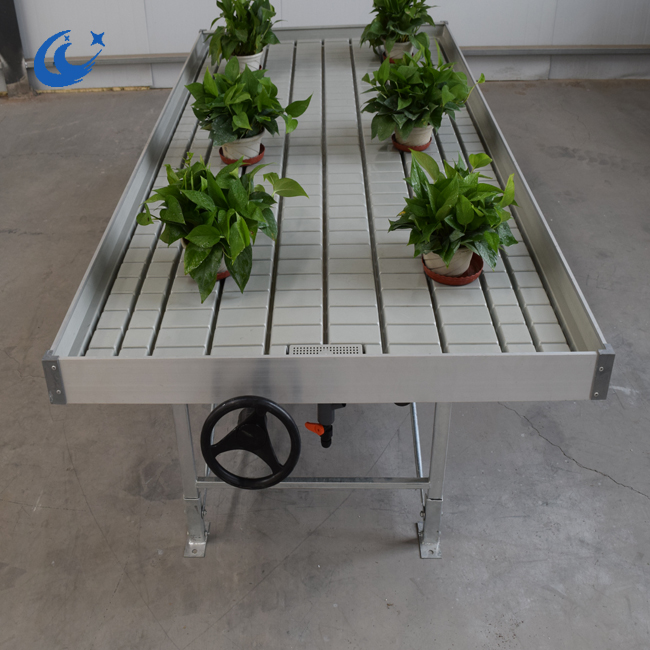 Long life ebb and flow bench greenhouse bench hydroponic grow system