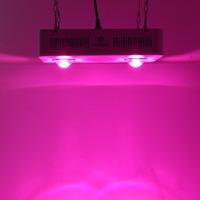 Professional led grow light factory 120w 210w 300w 400w 600w 1000w 2000w led plant grow light