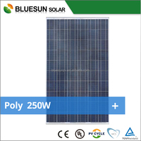 BLUESUN chinese manufacturer top quality LED garden light poly crystalline 250w decorative solar panels
