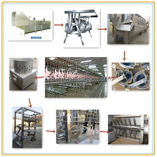 Food grade duck slaughter house for chicken.duck slaughter/poultry slaughter line