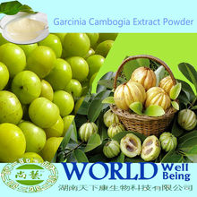 Natural Lose Weight Medincine Organic Garcinia Cambogia Extract Powder (HCA) No Side Effects Garcinia Cambogia Fruit Extract