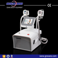 Osano Portable fat freezing cryolipolysis slimming machine LM-S800D