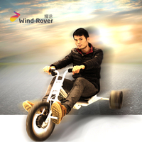Wind Rover cheap motorized electric drift trike for sale