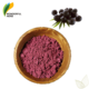 Organic pure skin whitening extract powder fresh fruit acai berry frozen