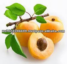 Wholesale Supplioer Of PurePeach Kernel Oil In USA