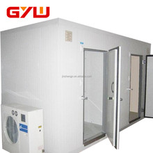Walk-in cold storage room for food, chiller and freezer room
