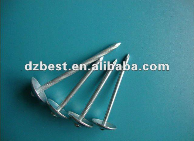 roofing nail for asphalt shingles with high quality