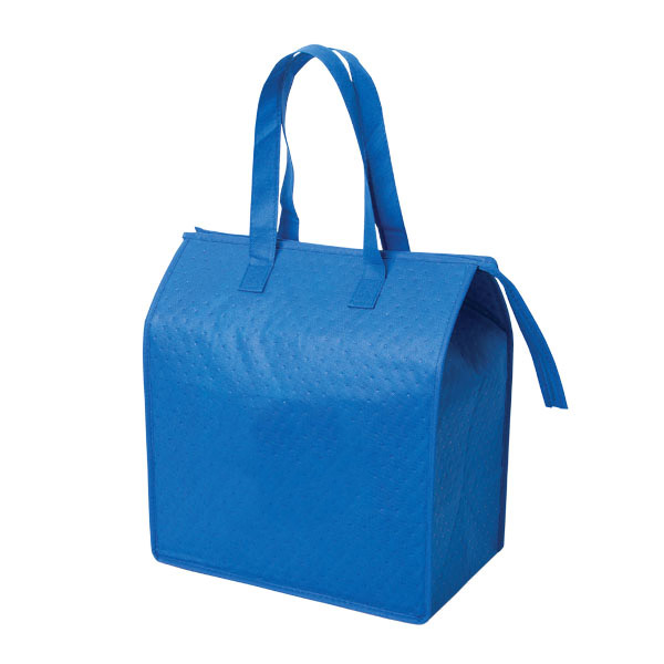 picnic coles cooler bag for girls frozen food