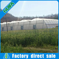 Galvanized Steel Frame Polytunnel Multi Span Greenhouse