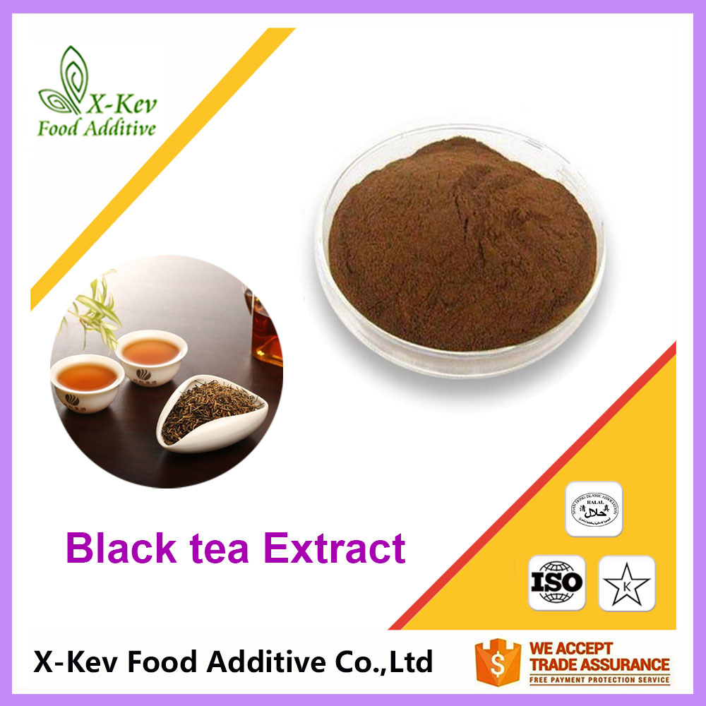 Factory Price 10-95% Polyphenols Instant Black Tea Extract Powder