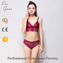 Guangzhou fashion lace bralette lingerie bra set new style sexy bra and panty new design