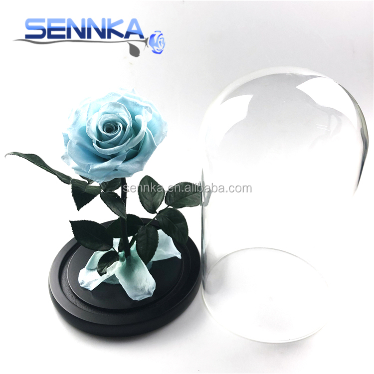 Preserved Stabilized Roses Forever Rose In Glass Dome Everlasting Forever Flowers From Yunnan Buy Preserved Stabilized Roses For Festival Decoration Rose With Glass Dome Multiple Dimensions Product On Alibaba Com,Joanna Gaines Shiplap Bedroom
