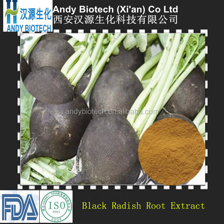 Golden Supplier Natural Grade Black Radish Root Extract Powder