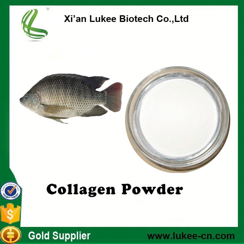 Raw Material for Fish Collagen Capsule,Water Soluable/hydrolyzed peptide Fish Collagen Powder
