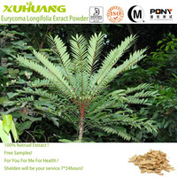 Natural herbal medicine Eurycoma Longifolia Root Extract