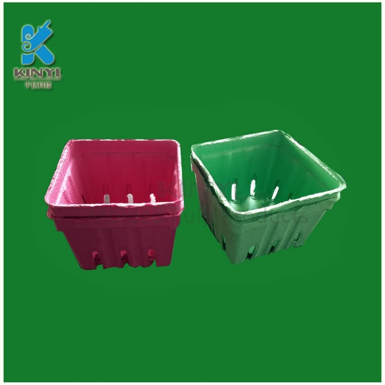 Disposable and Compostable Fruit Packaging Trays, Kiwi Fruit/ Strawberry Basket Packaging
