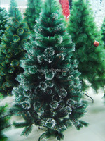 120cm canadian pine tree
