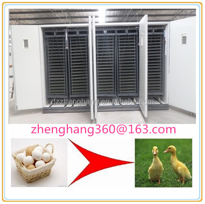 ZH-33792 large size turkey incubator/ poultry used 30000 chicken eggs hatching incubator machine for sale