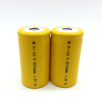 Hot sell NICD 12V D 5000mAh rechargeable battery