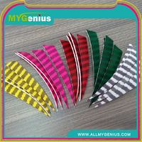 Factory wholesale wooden arrow ,H0Tmqm arrows feathers