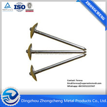 Umbrella Head Roofing Nails Large Head Nails Twisted Roofing Nails Factory In China